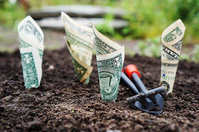 お金が成長する